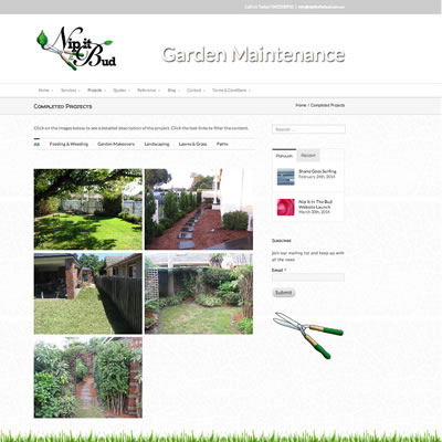 Website Design & Development : Nip it in the Bud