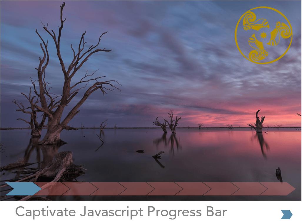 Captivate Progress Bar Project