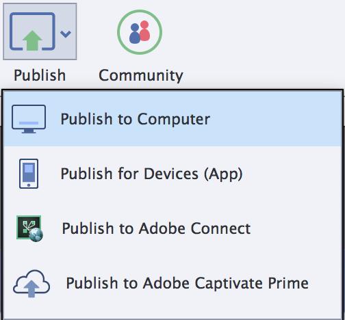 Captivate Progress bar publish button