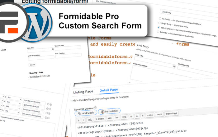 custom search form with Formidable Pro